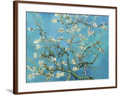 Almond Branches in Bloom, San Remy, c.1890-Vincent van Gogh-Framed Art Print