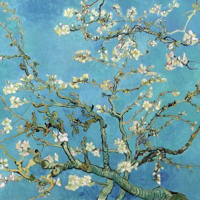 https://imgc.artprintimages.com/img/print/almond-branches-in-bloom-san-remy-c-1890_u-l-f5n1lf0.jpg?p=0