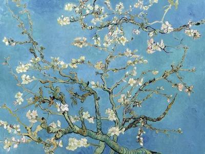 https://imgc.artprintimages.com/img/print/almond-branches-in-bloom-san-remy-c-1890_u-l-pjhr0p0.jpg?p=0