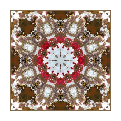 Almondi Ornament-Alaya Gadeh-Art Print