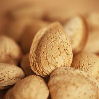 Almonds-Cristina-Photographic Print