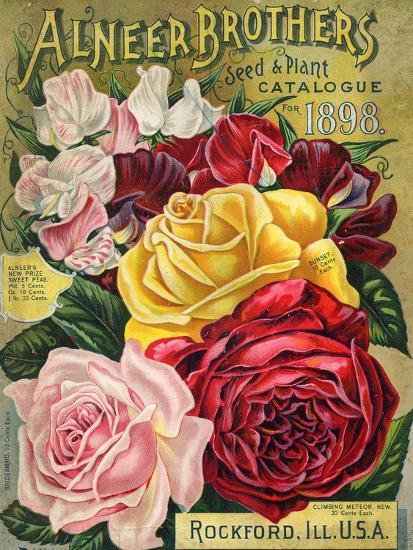 Alneer Brothers Seed and Plant Catalogue, 1898--Premium Giclee Print