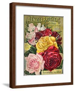 Alneer Brothers Seed and Plant Catalogue, 1898