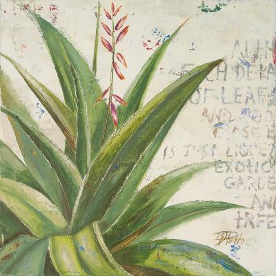 Aloe II-Patricia Pinto-Premium Giclee Print