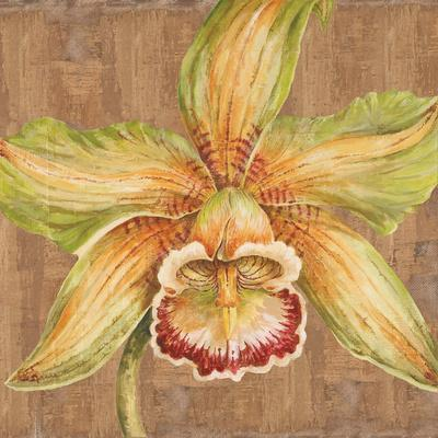 https://imgc.artprintimages.com/img/print/aloha-beauty-i_u-l-q12vvj80.jpg?p=0