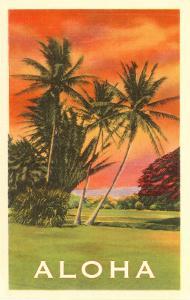Aloha: Palm Trees