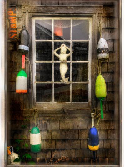 Aloneical-Craig Satterlee-Photographic Print