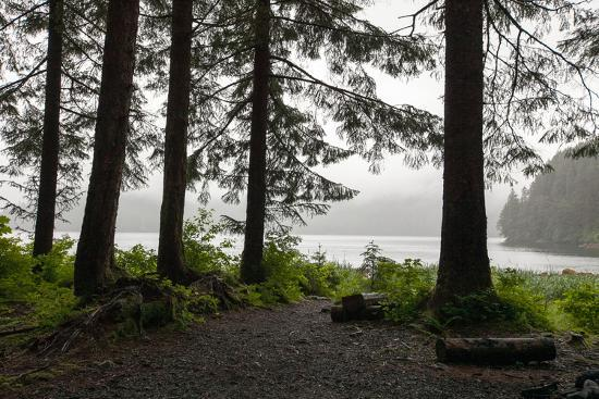Along a Tree-Lined Trail, a Lookout Offers Views over the Water-Eric Kruszewski-Photographic Print