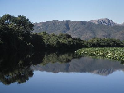 Along One of Many Waterways in the Pantanal of Western Brazil-Scott Warren-Photographic Print