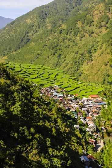 Along the Rice Terraces from Bontoc to Banaue, Luzon, Philippines-Michael Runkel-Photographic Print