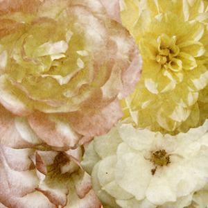 Beautiful Quartet I by Alonzo Saunders