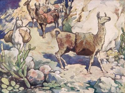 Alpacas on a Mountain Path-John Edwin Noble-Giclee Print