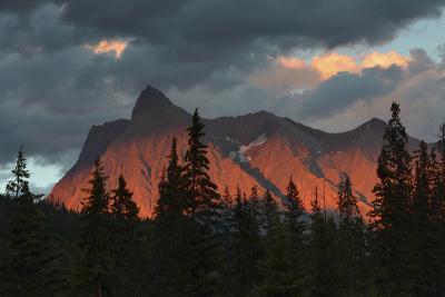 Alpenglow, from Kicking Horse River, British Columbia, Canada-Michel Hersen-Photographic Print