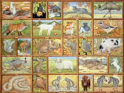 Alphabetical Animals-Ditz-Giclee Print