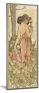 The Flowers: Carnation, 1898 by Alphonse Mucha