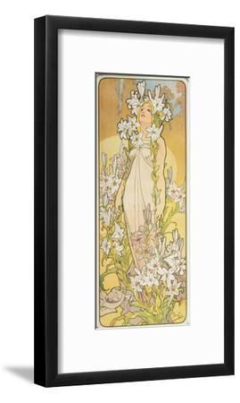 The Flowers: Lily, 1898