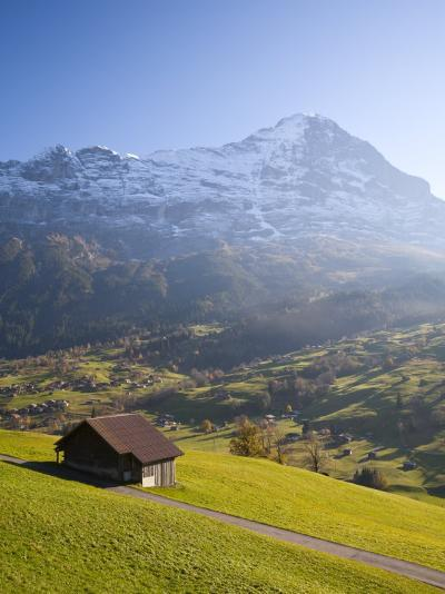 Alpine Meadow, Eiger and Grindelwald, Berner Oberland, Switzerland-Doug Pearson-Photographic Print