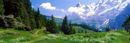 Alpine Scene Near Murren Switzerland--Photographic Print