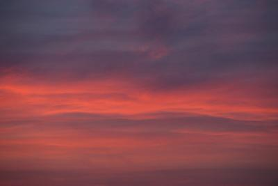 Altocumulus and Cirrus Clouds in the Evening Light-Greg Probst-Photographic Print