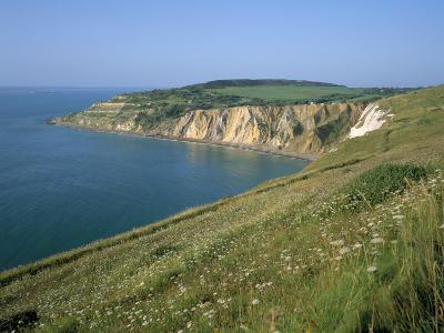 Alum Bay, Isle of Wight, England, United Kingdom-Roy Rainford-Photographic Print