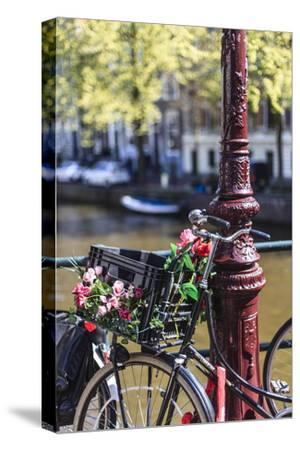 A Bicycle Decorated with Flowers by a Canal, Amsterdam, Netherlands, Europe