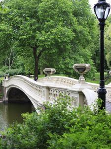 Bow Bridge, Central Park, Manhattan by Amanda Hall
