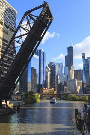 Chicago River and Downtown Towers, Willis Tower, Chicago, Illinois, USA by Amanda Hall