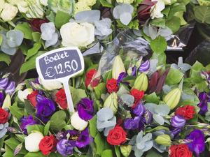 Flowers on Display in the Bloemenmarkt (Flower Market), Amsterdam, Netherlands, Europe by Amanda Hall