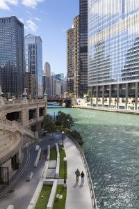 Glass Towers Along the Chicago River, Chicago, Illinois, United States of America, North America by Amanda Hall