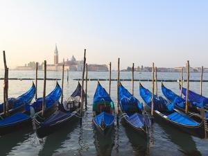 Gondolas on the Lagoon, San Giorgio Maggiore in the Distance, Venice, Veneto, Italy by Amanda Hall