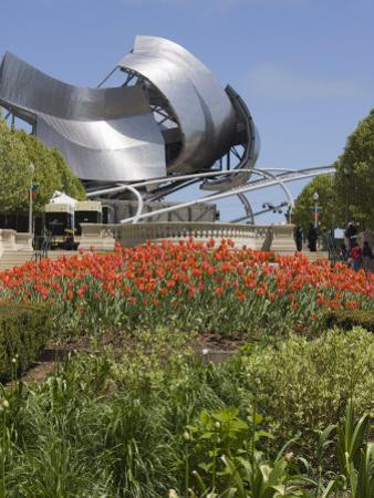 Jay Pritzker Pavillion Designed by Frank Gehry, Millennium Park, Chicago, Illinois, USA by Amanda Hall