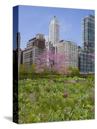 Lurie Garden, Millennium Park, Chicago, Illinois, United States of America, North America