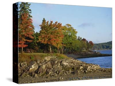 Rocky Shoreline and Trees at the Scenic Harbour, Bar Harbour, Maine, New England, USA