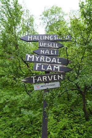 Signpost Near Flam, Norway, Scandinavia, Europe by Amanda Hall