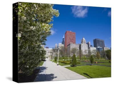 Spring Blossom in Grant Park, Chicago, Illinois, United States of America, North America