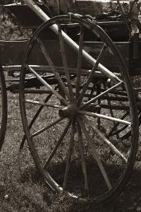 Wagon Wheel by Amanda Lee Smith