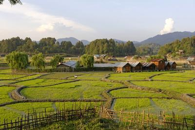 India, Arunachal Pradesh, Ziro Valley