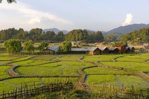 India, Arunachal Pradesh, Ziro Valley by Amar Grover