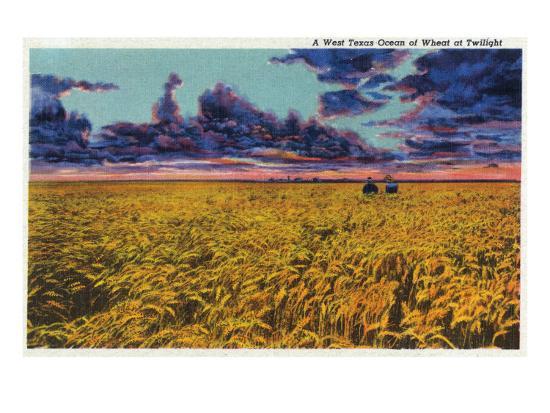Amarillo, Texas - View of a Field of Wheat at Twilight, c.1935-Lantern Press-Art Print