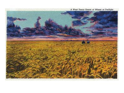 https://imgc.artprintimages.com/img/print/amarillo-texas-view-of-a-field-of-wheat-at-twilight-c-1935_u-l-q1goq6x0.jpg?p=0