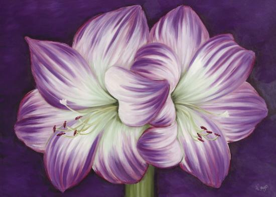 Amaryllis Amour-Kaye Lake-Art Print