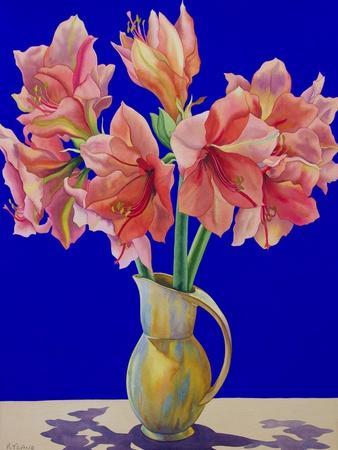 https://imgc.artprintimages.com/img/print/amaryllis-in-a-jug-2007_u-l-pjfkzq0.jpg?p=0