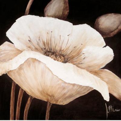 Amazing Poppies II-Jettie Roseboom-Art Print
