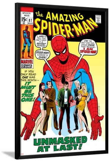 Amazing Spider-Man No.87 Cover: Spider-Man, Mary Jane, Gwen, Harry Osborn, and Peter Parker Posing--Lamina Framed Poster