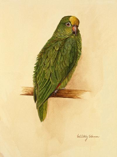 Amazon Green, 1984-Mary Clare Critchley-Salmonson-Giclee Print