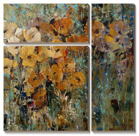 Amber Poppy Field II-Tim O'toole-Canvas Art Set