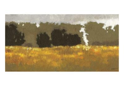 Amber Waves I-Norman Wyatt Jr^-Art Print