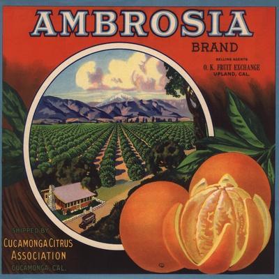 https://imgc.artprintimages.com/img/print/ambrosia-brand-upland-california-citrus-crate-label_u-l-q1grdcg0.jpg?p=0