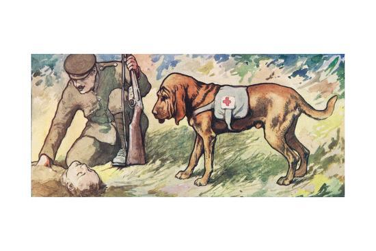 Ambuland Bloodhound, Illustration from 'Helpers Without Hands'-John Edwin Noble-Giclee Print