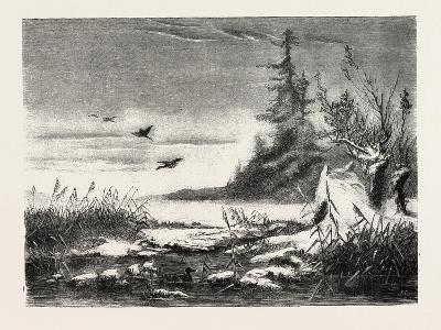 Ambush for Duck Shooting, 1882--Giclee Print
